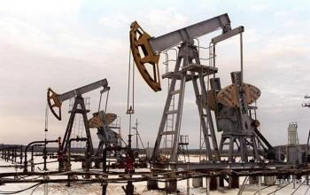 Нефть резко подорожала после падения