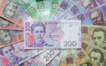 Украинцы задекларировали почти 84 млрд за год